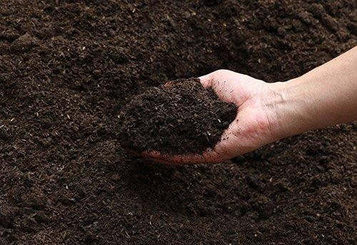 堆肥の熟成
