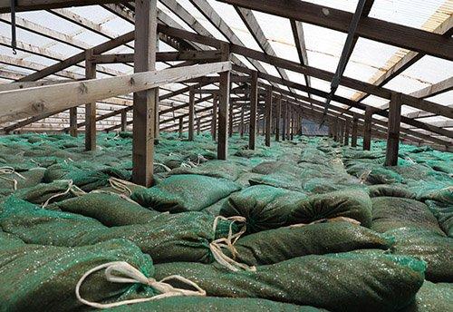 堆肥舎の脱臭装置