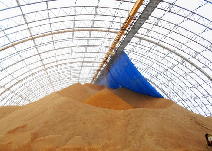 穀物の搬送システム